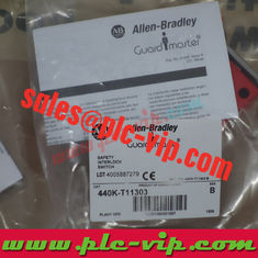 China Allen Bradley Guardmaster 440G-T27262 / 440GT27262 supplier